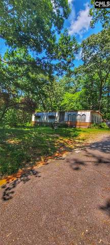 382 Oliver Metz Road, Lexington, SC 29072 (MLS #500265) :: EXIT Real Estate Consultants