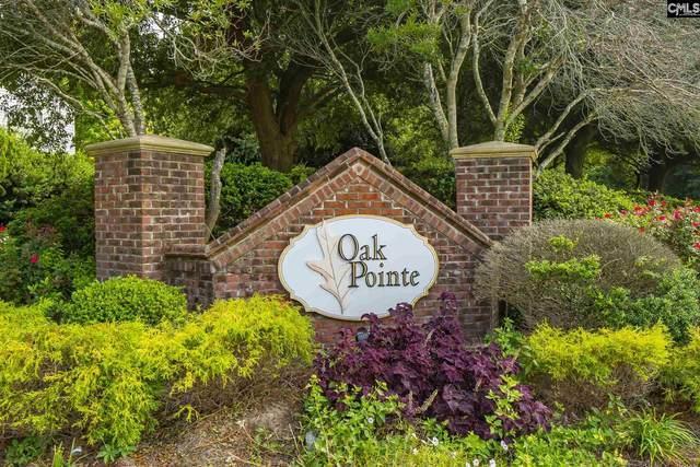 553 Blue Lake Drive, Lexington, SC 29072 (MLS #500441) :: Home Advantage Realty, LLC