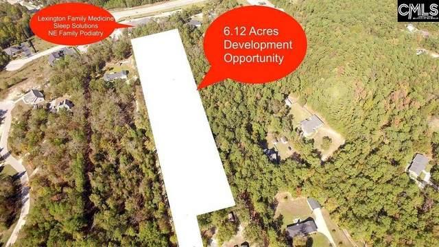 4051 Hardscrabble Road, Columbia, SC 29223 (MLS #500497) :: EXIT Real Estate Consultants