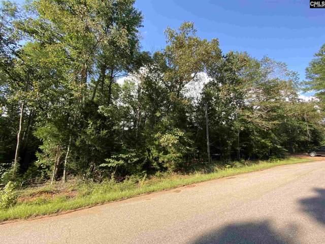 2308 Waterfront Road, Liberty Hill, SC 29704 (MLS #500922) :: Loveless & Yarborough Real Estate