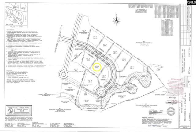 328 E Arrowleaf Drive (Lot 28), Elgin, SC 29045 (MLS #501417) :: Home Advantage Realty, LLC