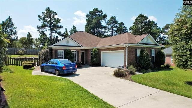 245 Faversham Lane, Columbia, SC 29229 (MLS #501528) :: EXIT Real Estate Consultants