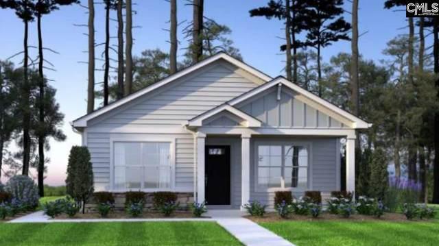234 Bent Holly Drive, Hopkins, SC 29061 (MLS #501623) :: Loveless & Yarborough Real Estate