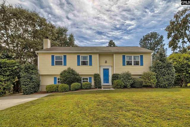305 Bridleridge Road, Lexington, SC 29073 (MLS #502152) :: NextHome Specialists