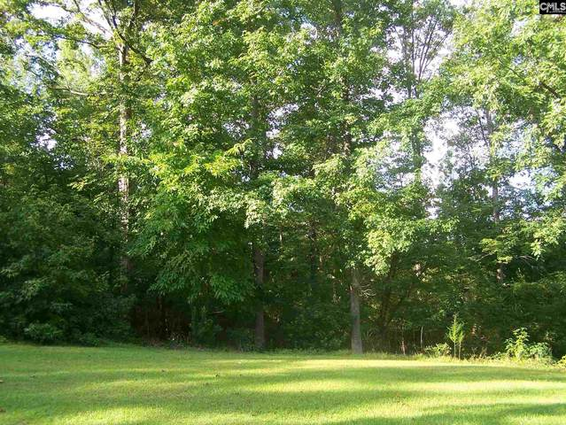 1343 Rolling Hills Road Lot #107, Ridgeway, SC 29130 (MLS #502291) :: The Olivia Cooley Group at Keller Williams Realty