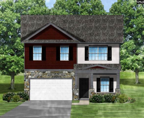 429 Kingsley View (Lot 51) Road, Blythewood, SC 29016 (MLS #502408) :: The Latimore Group