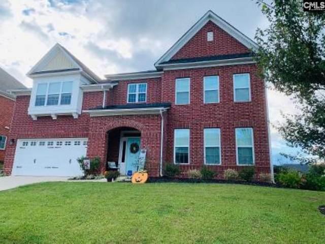 321 Asa Rose Lane, Lexington, SC 29072 (MLS #502622) :: EXIT Real Estate Consultants
