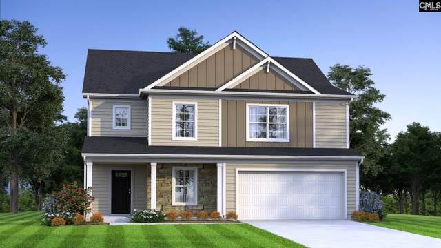256 Ymca Road, Lexington, SC 29073 (MLS #502680) :: Loveless & Yarborough Real Estate