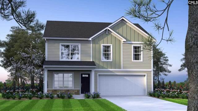 260 Ymca Road, Lexington, SC 29073 (MLS #502697) :: Loveless & Yarborough Real Estate