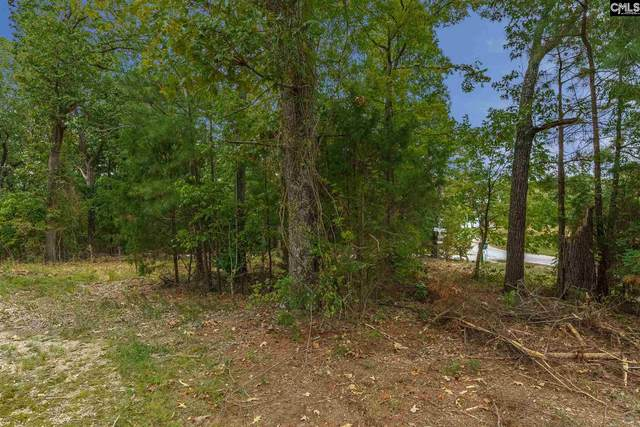 612-B Green Meadow Drive Lot B, Chapin, SC 29036 (MLS #502864) :: The Olivia Cooley Group at Keller Williams Realty