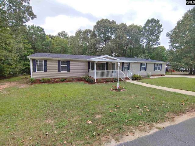 312 Maple Hollow Lane, Chapin, SC 29036 (MLS #502968) :: The Olivia Cooley Group at Keller Williams Realty
