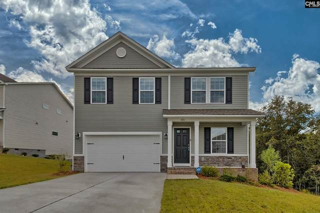 601 Teaberry Drive, Columbia, SC 29229 (MLS #503180) :: The Meade Team