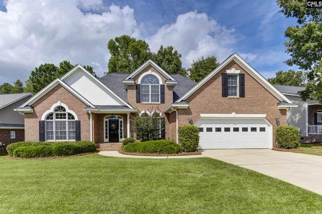 309 Lighthouse Lane, Chapin, SC 29036 (MLS #503413) :: The Latimore Group