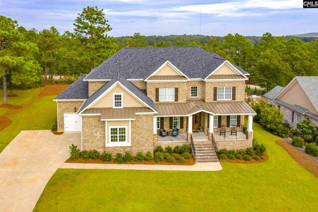 223 Yellow Jasmine Drive, Elgin, SC 29045 (MLS #503618) :: The Shumpert Group