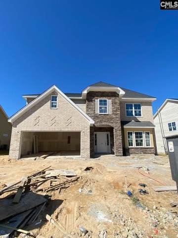 167 Wading Bird Loop Lot 170, Blythewood, SC 29016 (MLS #503720) :: Disharoon Homes