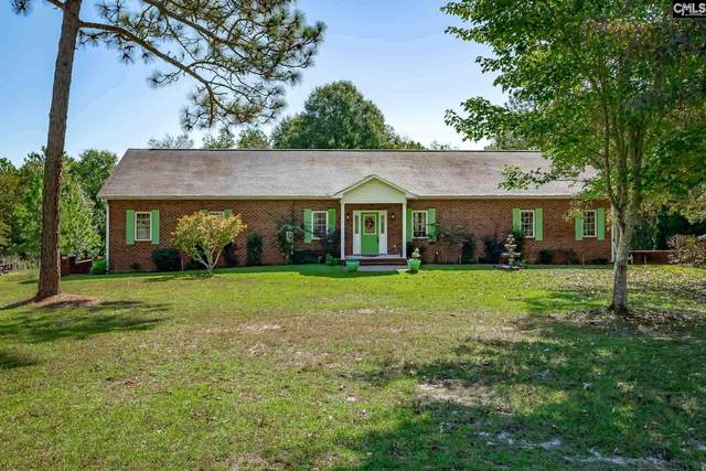 853 Edisto Lake Rd, Wagener, SC 29164 (MLS #503890) :: The Olivia Cooley Group at Keller Williams Realty