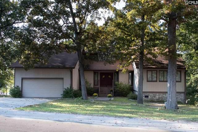 340 Adams Lane, Gilbert, SC 29054 (MLS #504099) :: The Olivia Cooley Group at Keller Williams Realty
