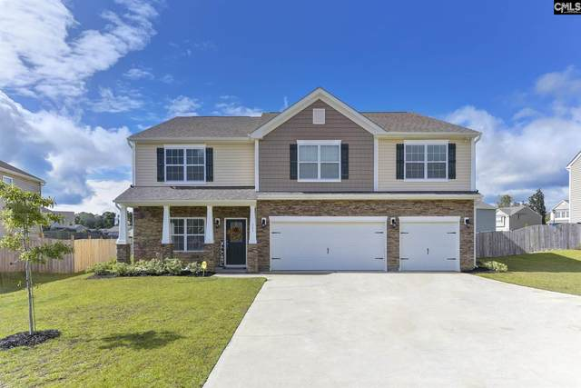 711 Cape Horn Lane, Chapin, SC 29036 (MLS #504325) :: Disharoon Homes