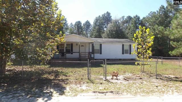 2737 Pine Street, Pelion, SC 29123 (MLS #504405) :: EXIT Real Estate Consultants