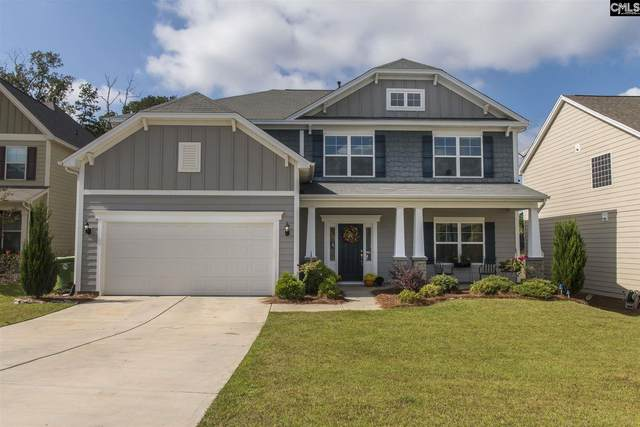 432 Maria Posada Court, Chapin, SC 29036 (MLS #504406) :: EXIT Real Estate Consultants