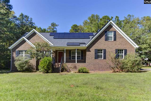 2141 Chapin Road, Chapin, SC 29036 (MLS #504672) :: Resource Realty Group