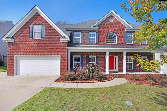313 Red Tail Drive, Blythewood, SC 29016 (MLS #504745) :: The Olivia Cooley Group at Keller Williams Realty