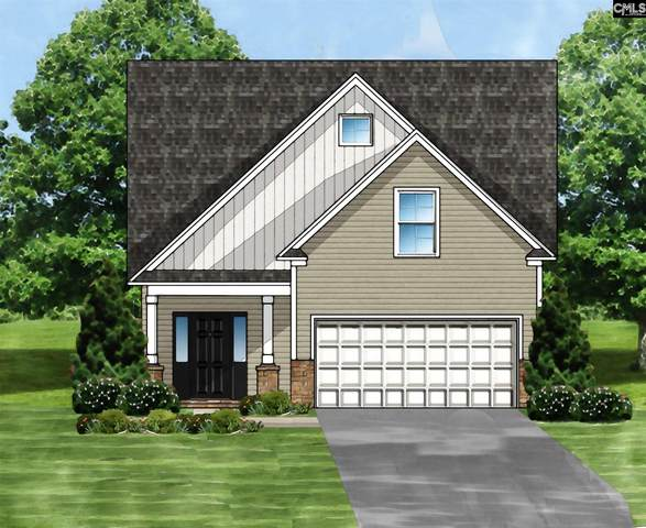 120 Doolittle Drive 03, Chapin, SC 29036 (MLS #504779) :: Home Advantage Realty, LLC