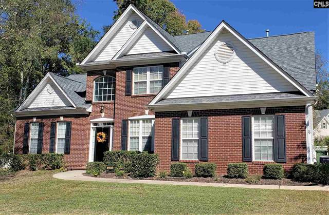 205 Coopers Hawk Circle, Irmo, SC 29063 (MLS #504843) :: The Olivia Cooley Group at Keller Williams Realty