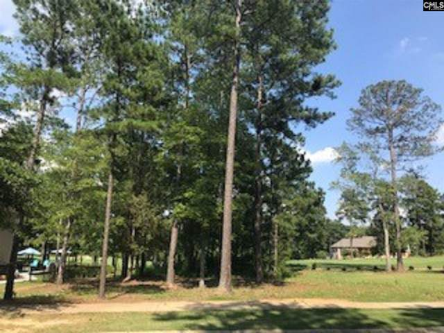 1156 Coogler Crossing Drive, Blythewood, SC 29016 (MLS #504860) :: Resource Realty Group