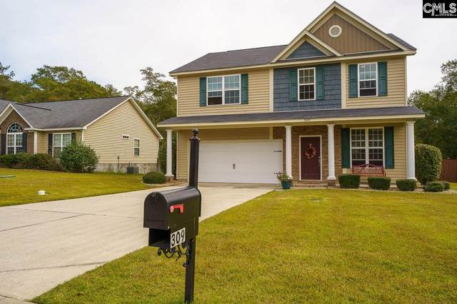 309 Kenmore Park Drive, Columbia, SC 29223 (MLS #504898) :: The Meade Team
