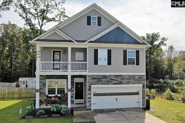 301 Saucer Way, Chapin, SC 29036 (MLS #504962) :: Fabulous Aiken Homes