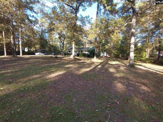 1661 Old Lexington Highway, Chapin, SC 29036 (MLS #505002) :: EXIT Real Estate Consultants