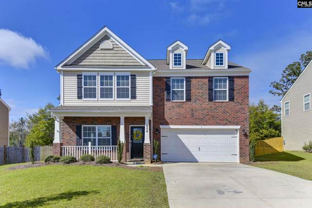 854 Sunseeker Drive, Chapin, SC 29036 (MLS #505140) :: The Olivia Cooley Group at Keller Williams Realty