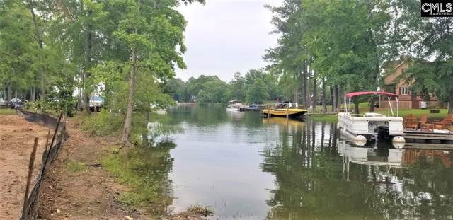 700 Mayflower Court Lots A And B, Chapin, SC 29036 (MLS #505411) :: EXIT Real Estate Consultants