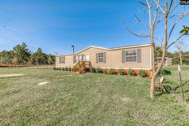 240 Hass Lucas Road, Gaston, SC 29054 (MLS #505660) :: Home Advantage Realty, LLC