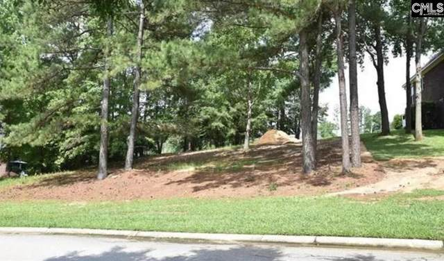104 Bay Pointe Drive, Chapin, SC 29036 (MLS #505935) :: EXIT Real Estate Consultants