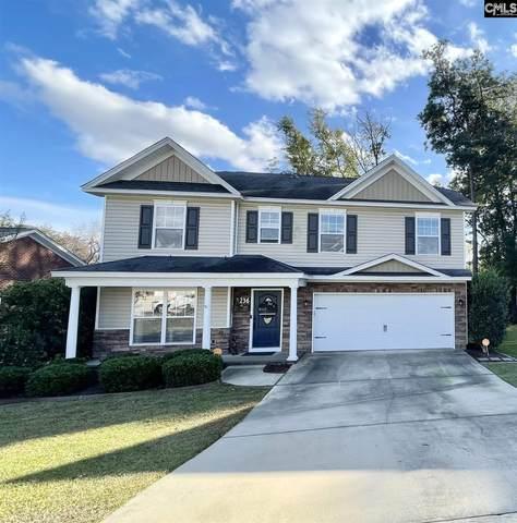 236 Letha Lane, Lexington, SC 29072 (MLS #505997) :: The Neighborhood Company at Keller Williams Palmetto