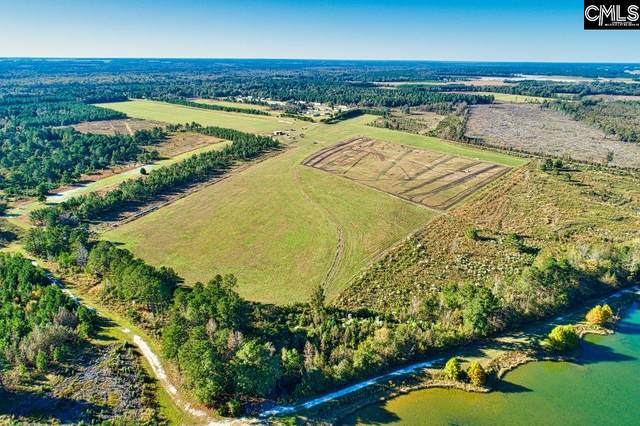 TBD Riverbirch Road, Bishopville, SC 29010 (MLS #506172) :: EXIT Real Estate Consultants