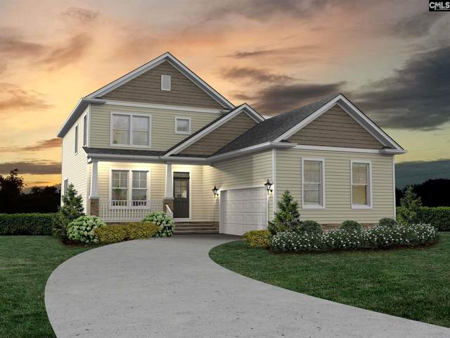 216 Bowyer Court, Chapin, SC 29036 (MLS #506227) :: The Meade Team