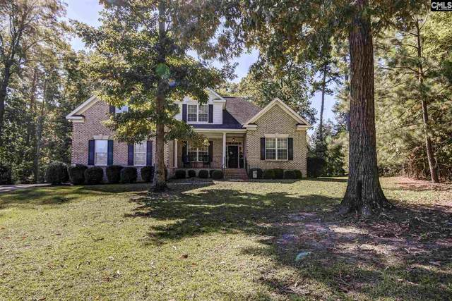 404 Little Key Court, Chapin, SC 29036 (MLS #506297) :: EXIT Real Estate Consultants