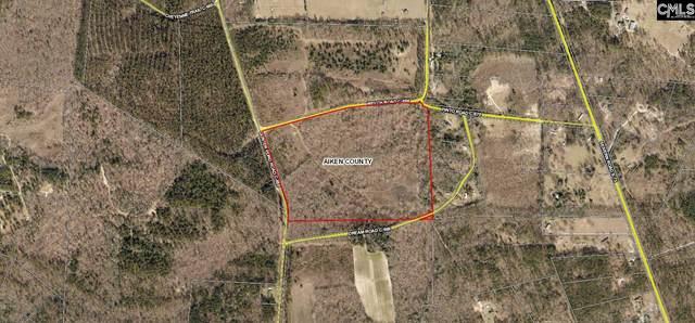 67 Dream Road, Wagener, SC 29164 (MLS #506304) :: Home Advantage Realty, LLC