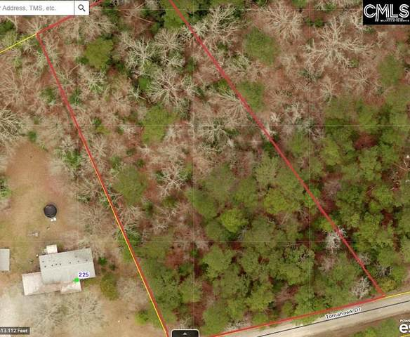 Tomahawk Drive Lot 5, Chapin, SC 29036 (MLS #506454) :: NextHome Specialists