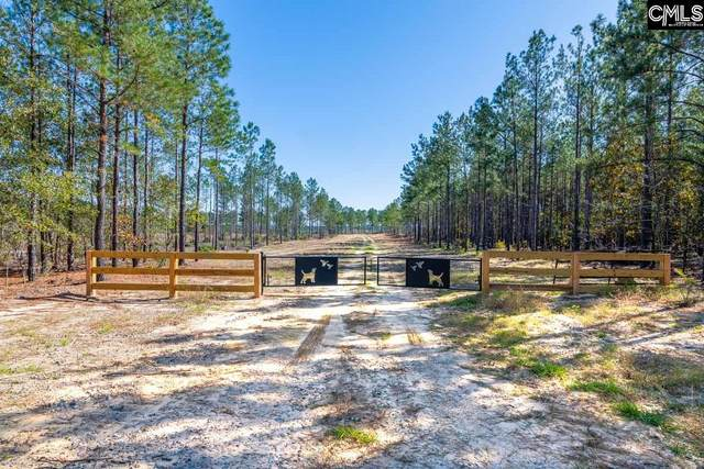 1401 Cheraw Road Tract 4, Cassatt, SC 29032 (MLS #506505) :: The Olivia Cooley Group at Keller Williams Realty