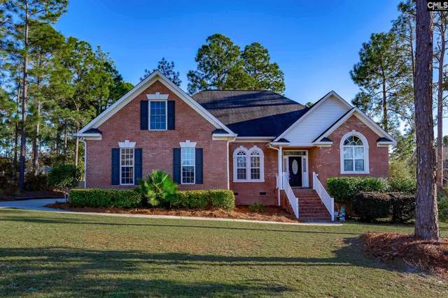 276 Haigs Creek N, Elgin, SC 29045 (MLS #506555) :: The Meade Team