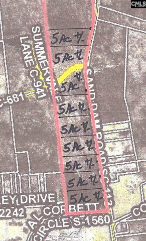 5AC Sand Dam Road 5, Wagener, SC 29164 (MLS #506606) :: Home Advantage Realty, LLC