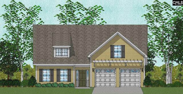 722 Ruskin Drive, Chapin, SC 29036 (MLS #506633) :: Disharoon Homes