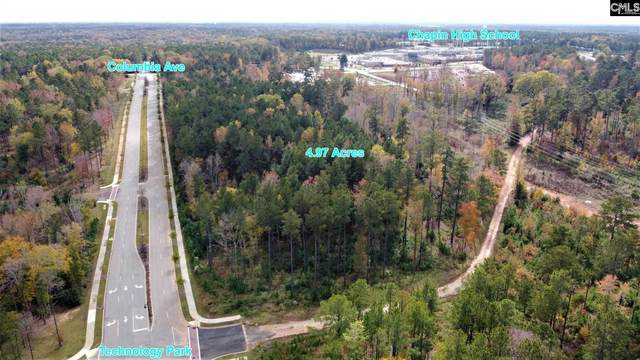 0 Columbia Avenue Parcel B, Chapin, SC 29036 (MLS #506649) :: EXIT Real Estate Consultants