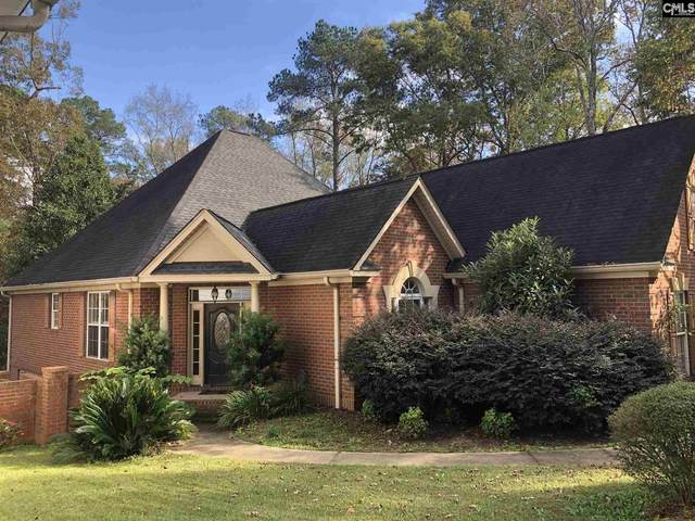 145 Giaben Drive, Lexington, SC 29072 (MLS #506656) :: Home Advantage Realty, LLC