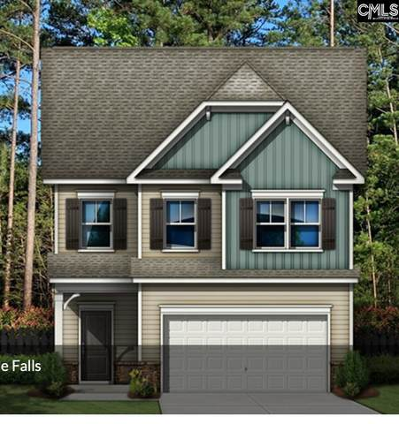 914 North Sage Drop Road, Blythewood, SC 29016 (MLS #506852) :: The Olivia Cooley Group at Keller Williams Realty