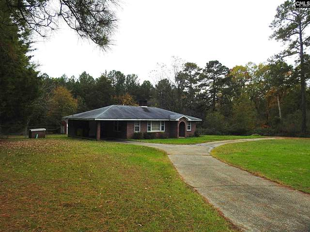 1101 Johnson Marina Road, Chapin, SC 29036 (MLS #506856) :: Resource Realty Group